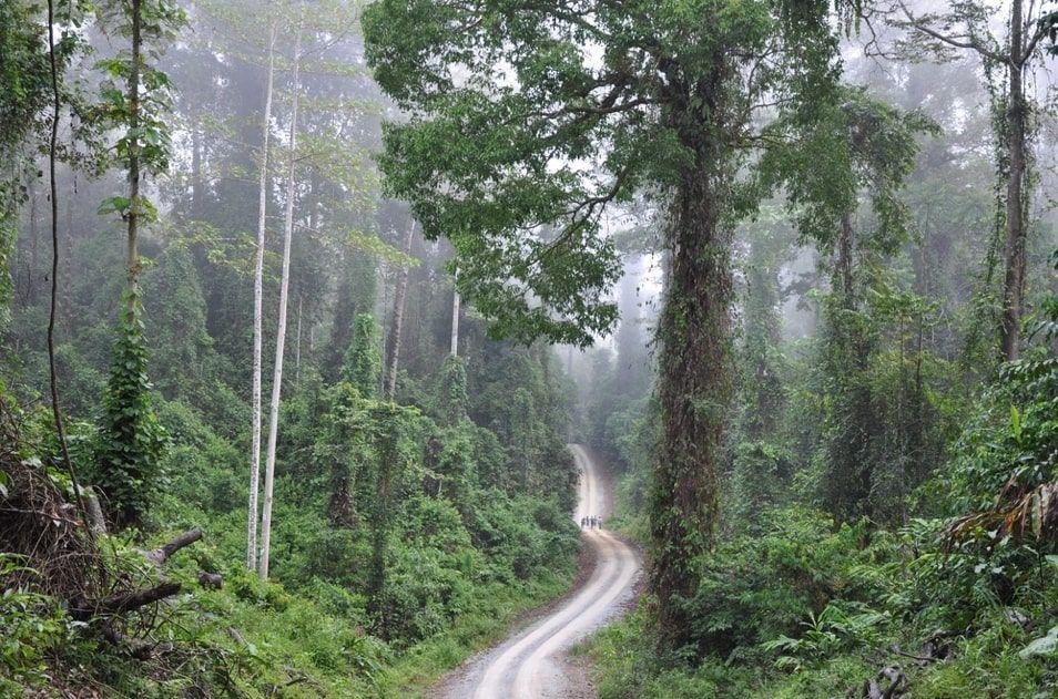Danum Valley, Sabah