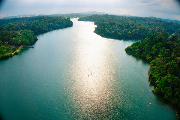 MacRitchie Reservoir Park from the air. Image courtesy of Singapore Tourism Board.