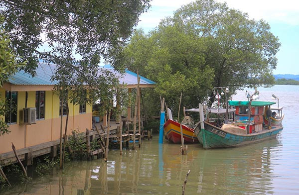 Kuala Teriang, Langkawi, Malaysia. Image courtesy of Vanessa Workman.