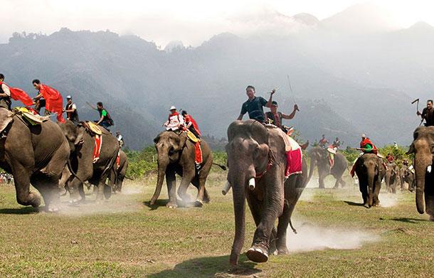 Elephant Race Festival