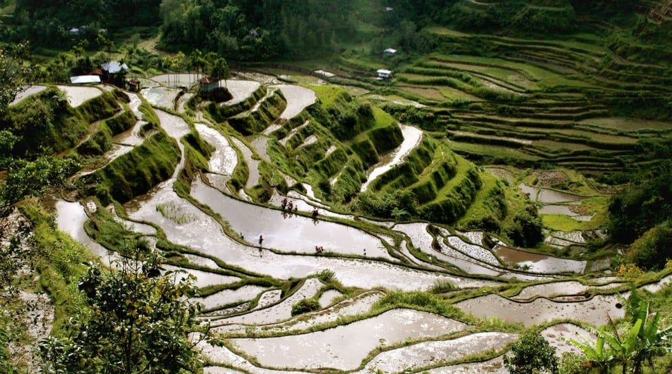 Banaue Rice Terraces / Jon Rawlinson / CC-BY-2.0 / Flickr