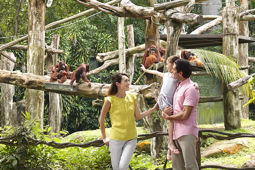 Singapore Zoo. Visit SoutheastAsia.