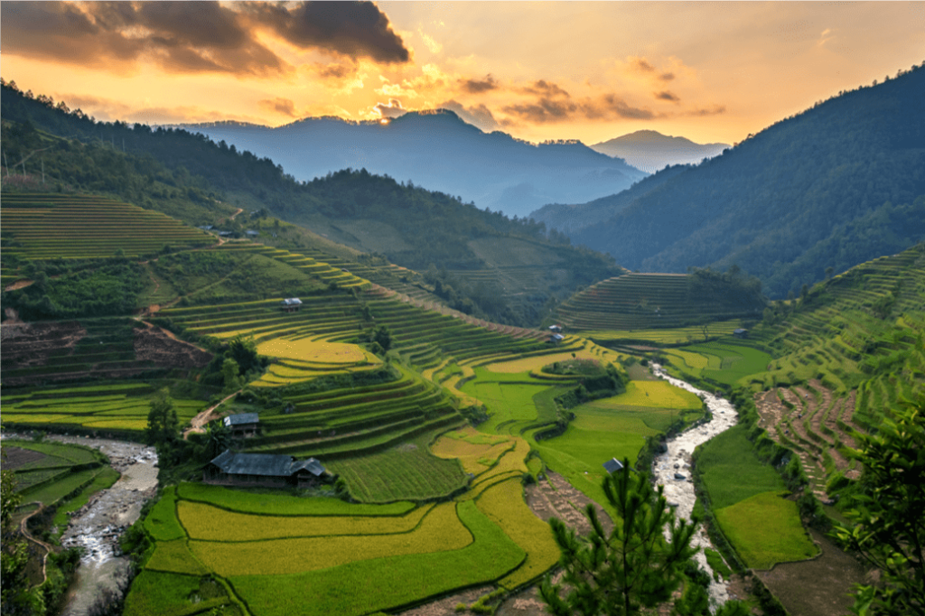 Banaue Rice Terraces / Shutterstock